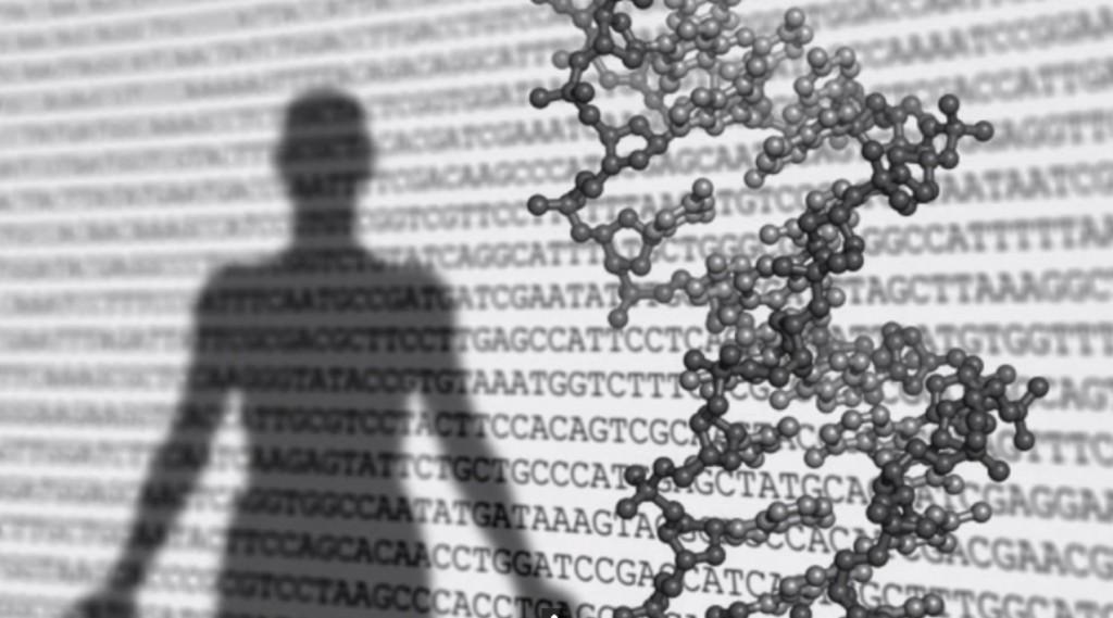 Abertura de video de divulgação da pesquisa sobre celulas-tronco, produzido antes de ser comprovada fraude no estudo. Imagem: Reprodução
