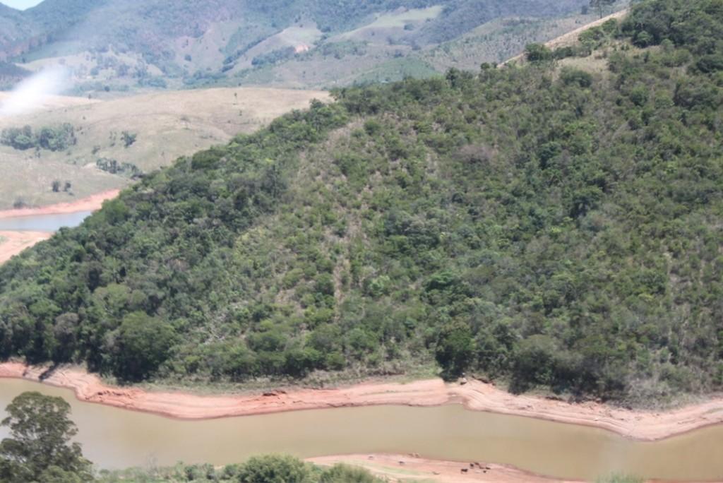 """Área de cobertura vegetal nativa em estágio de recuperação superior a 4 anos, situada à margem da represa Cahoeira, do sistema Cantareira (23º 01' 34"""" S , 46º 15' 34"""" W). Imagem: Sergio Luis Marçon/SMA"""