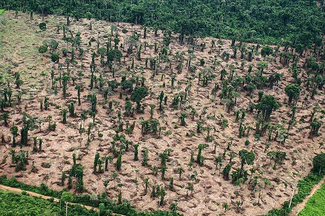 Área desmatada na Amazônia. Imagem: Rodrigo Baleia/Folhapress